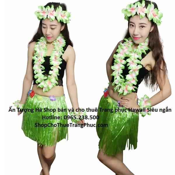 HAWAII-TONG-HOP-40CM-AN-TUONG-HA_compressed