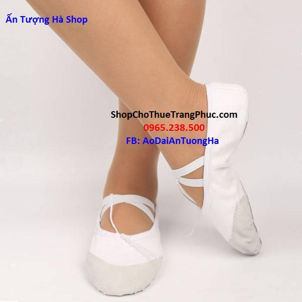 Giày múa, giày biểu diễn